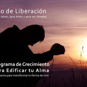 01 Seminario de Liberación
