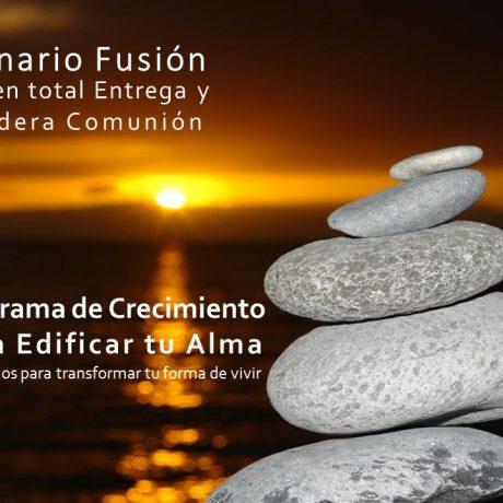 11 Seminario Fusión